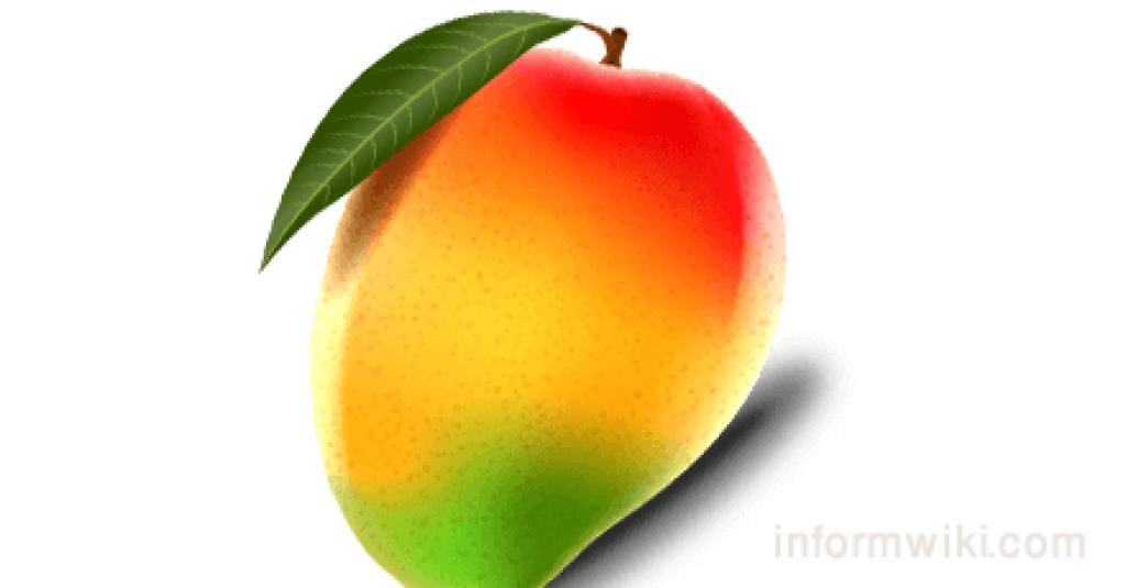 Juicing recipes-Mango